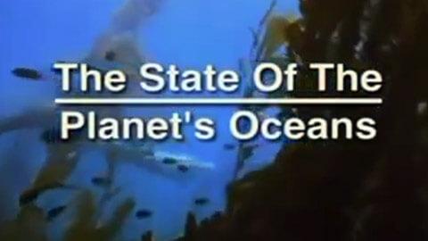 El estado de los océanos